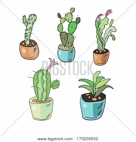 Set Of Isolated Hand Drawn Cacti And Succulents. Doodle Colorful Home Flowers In Pots Isolated On Wh