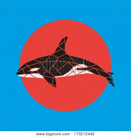 Geometry grampus whale vector illustration on red and blue background.