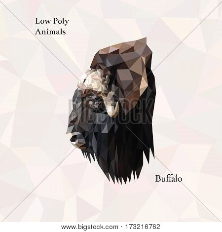 Head of brown buffalo portrait from low poly. Vector polygonal illustration. Set of triangle animals. Realistic image