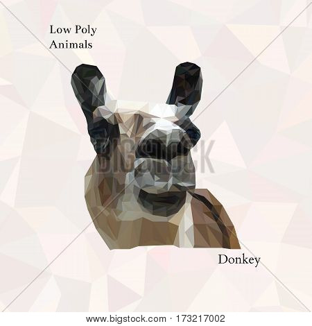 Head of funny donkey portrait from low poly. Vector polygonal illustration. Collection of triangle animals. Realistic image