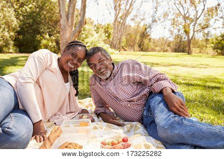 Outdoor Portrait Of Mature Couple Enjoying Picnic In Park