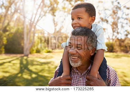 Grandfather Carries Grandson On Shoulders During Walk In Park