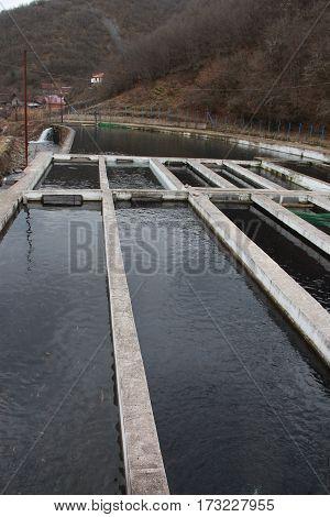 Fish Farm Using The Natural Water