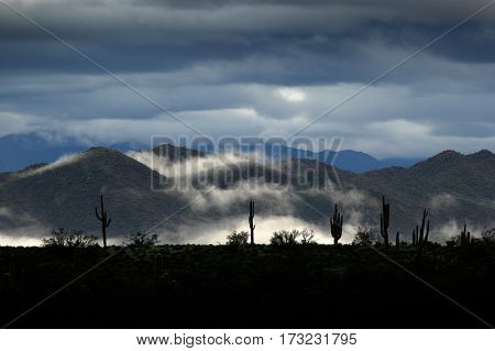 Valley of fog with clouds in the desert