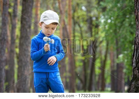 Cute 4 Years Old Boy With Dandelion Outdoors At Sunny Summer Day.