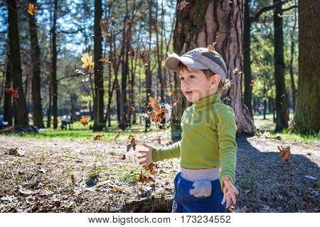 Autumn Fun: A Boy Throws Fallen Leaves Up Into The Air.
