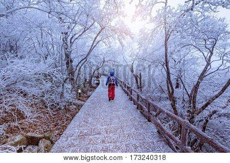 Young woman on the walkway in Huangshan National park. Park located in Anhui province in China. It is a UNESCO World Heritage Site.