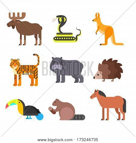 Vector flat style set of animals. Hedgehog, tiger, snake. Icon for web. Isolated on white background.