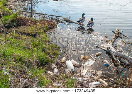 garbage along the shoreline of the lake in Branch Brook park in newark new jersey.