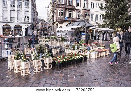 TrierGermany- January 03 2017: Dealers sell flowers on the market square. Tourists strolling through the square
