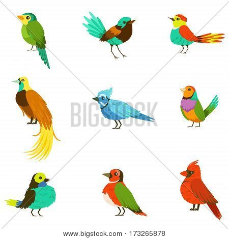 Exotic Birds From Jungle Rain Forest Collection Of Colorful Animals Including Species Of Paradise Birds And Parrots. Winged Fauna Of Southern Regions With Bright Color Feathers Vector Illustrations.