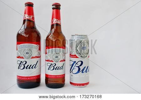 Dusseldorf, Germany - February 18, 2017: Three Bottles Of Beer Bud Against White Background.