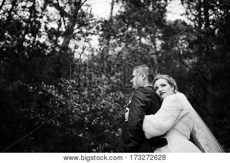 Wedding Couple In Love At Autumn Pine Wood. Black And White Photo