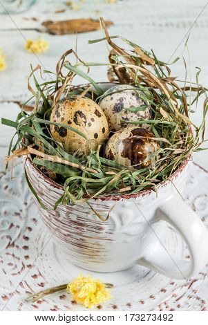 Eggs In A Nest In An Old Coffee Cup