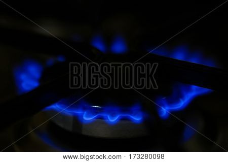 Blue flame of burning natural gas of modern stove