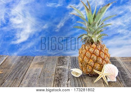 tropical pineapple on rustic wood with seashell and starfish