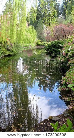 Spring Reflections of Trees, Flowers and Bushes in Garden Setting