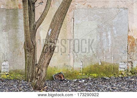 abandoned grunge cracked brick stucco wall background