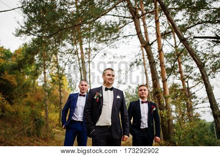 Groom With Best Mans On Bow Tie At Autumn Pine Wood.