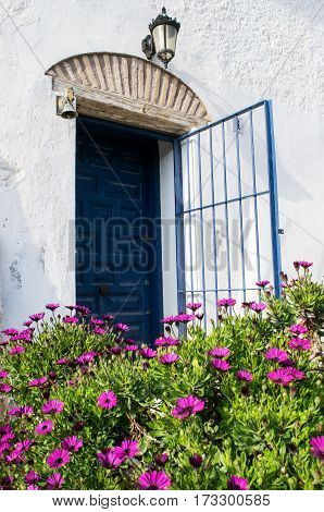 Spanish blue old entrance door with the open gate in white house, purple chrysantemum flowers in front