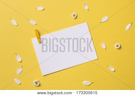 Spring or summer background with copy space for text: blank stationary template / invitation mockup with clothespin chamomiles and petals. Top view. Flat lay.