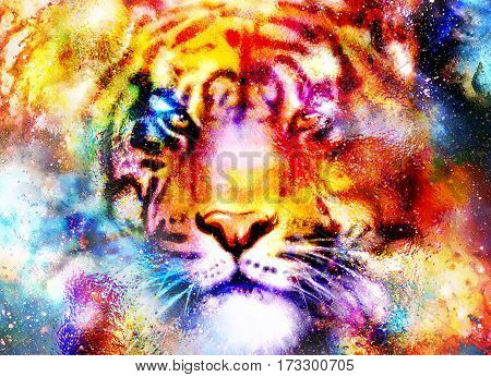 magical space tiger, multicolor computer graphic collage.. Eye contact