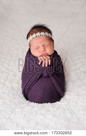 Sleeping nine day old newborn baby girl swaddled in a purple wrap. Shot in the studio on a white blanket.