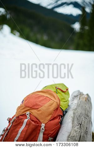 two backpacks on the snow near log