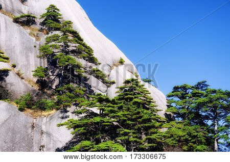 The dramatic landscape of Huangshan or Yellow Mountain located in Anhui Province China.