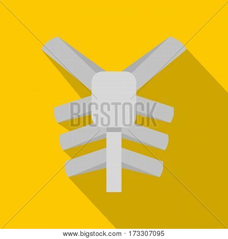 Human thorax icon. Flat illustration of human thorax vector icon for web