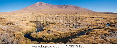 Swamp with dry grass. Mountains of Altiplano Bolivia South America