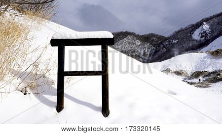 Snow And Blank Signage In The Forest Snow Winte