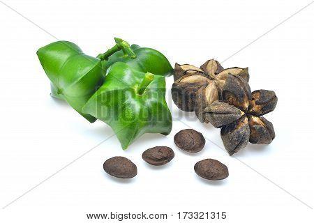 fresh sacha inchi isolated on white background