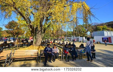 People At The City Park In Osaka, Japan