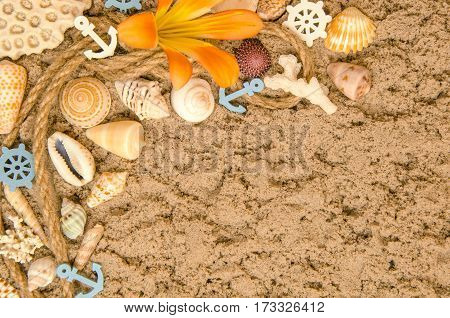 Summer Background With Seashell On Sand