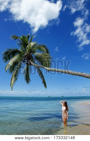 Young Woman In Bikini Standing Under Palm Tree At Makaha'a Island Near Tongatapu Island In Tonga