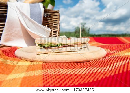 Picnic concept - sandwich on wooden cutting board