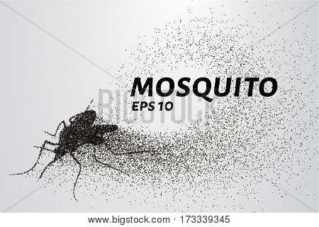 The Mosquito Of The Particles. The Mosquito Consists Of Circles And Points. Vector Illustration
