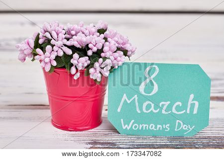 Bucket, flowers and card. Greeting for beloved woman.