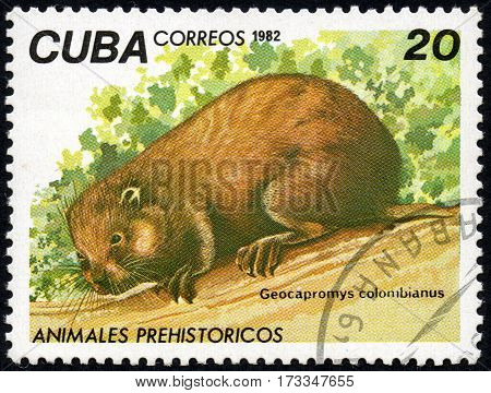 UKRAINE - CIRCA 2017: A stamp printed in Cuba shows a extinct animal rodent Geocapromys colombianus the series Prehistoric animals circa 1982