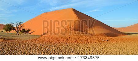 Dune 45 is a star dune in the Sossusvlei area of the Namib Desert
