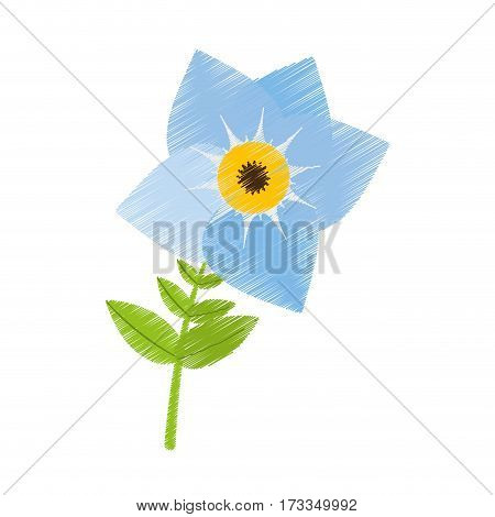 drawing pansy flower plant nature vector illustration eps 10