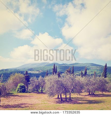 Landscape Park in the Foothills of Italian Alps Instagram Effect
