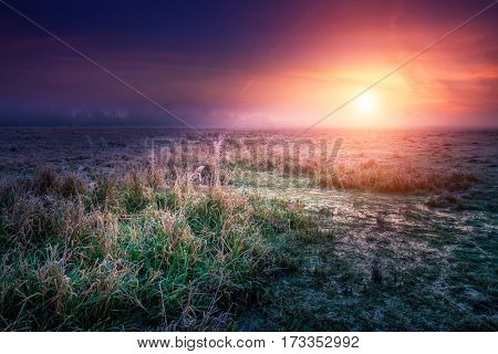 Fantastic foggy field with fresh green grass in the sunlight. Unusual and picturesque scene. Location place Seret river, Ternopil. Ukraine, Europe. Beauty world. Retro style filter. Instagram toning.
