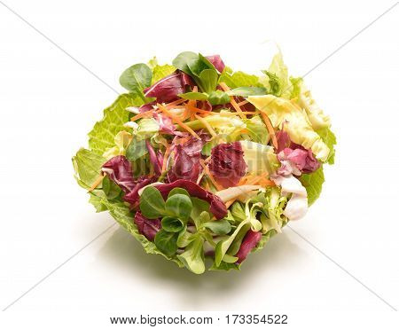 Salad mix with rucola frisee radicchio.carrot and lamb's lettuce