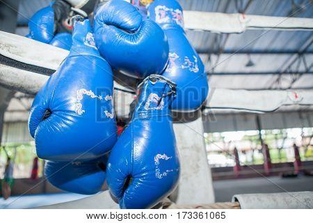 ฺblue Muay Thai Boxing Gloves Hanging On Corner Of  Boxing Ring In Camp