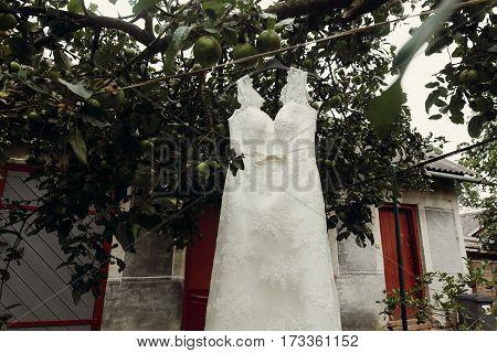 Elegant, Stylish White Wedding Dress Hanging Outdoors Near Trees, Female Wedding Clothes On Hanger S