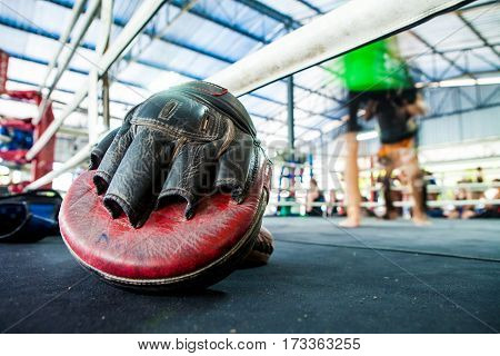 Thai Boxing Mitt Training Target Focus Punch Pad Glove On Canvas Ring In Gym Or Camp