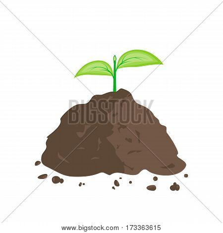 Green sprout in pile of ground. Planting sapling. Vector illustration flat design