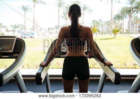 Back view photo of young attractive sports lady make sport exercises indoors at gym.